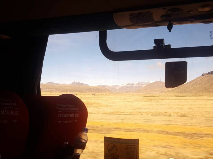 bus through yellow Andes Peru llamas and alpacas