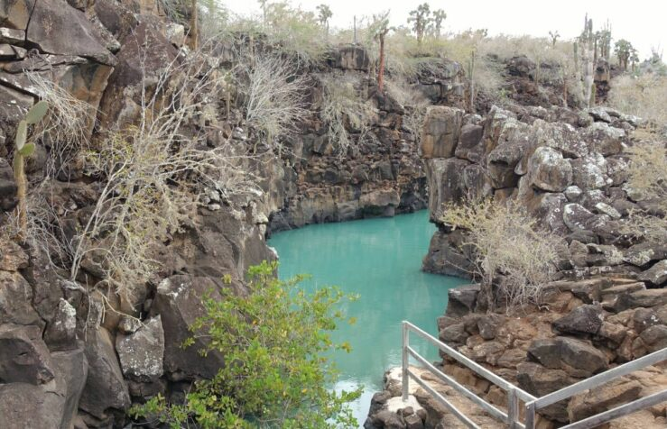 Emerald green water in Las Grietas. Blue-footed booby birds and giant sea turtles