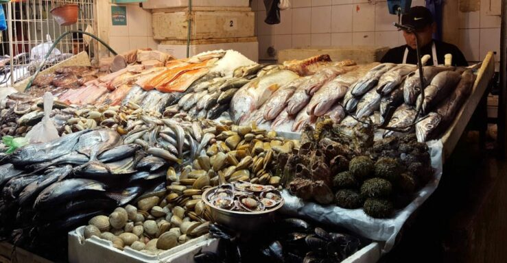 pescado mercado central centropuerto santiago Hostal Yungay