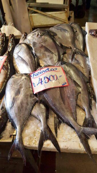 reineta mercado central chile