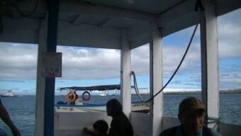 the local ferry