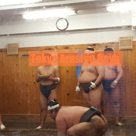 sumo wrestling game in Tokyo