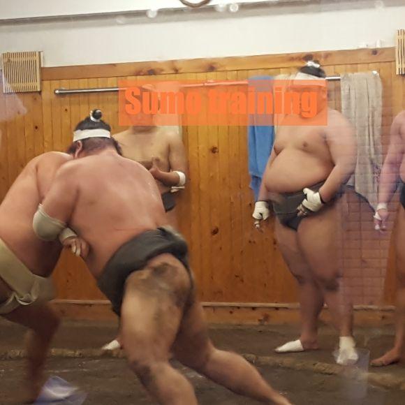 Japanese sumo wrestling in Tokyo