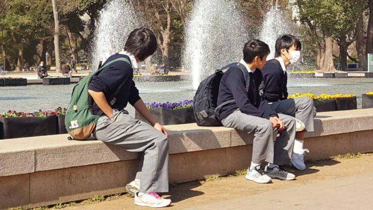 Cherry Blossom season in Ueno Park - Tokyo