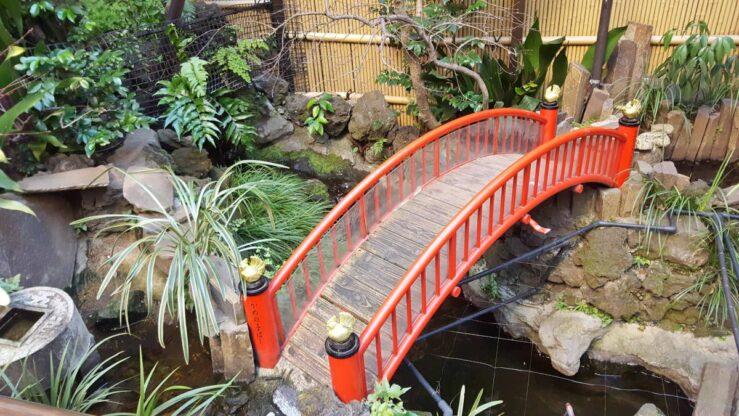 We pass small secret gardens on our way through Bunkyo. Tokyo onsen hotel