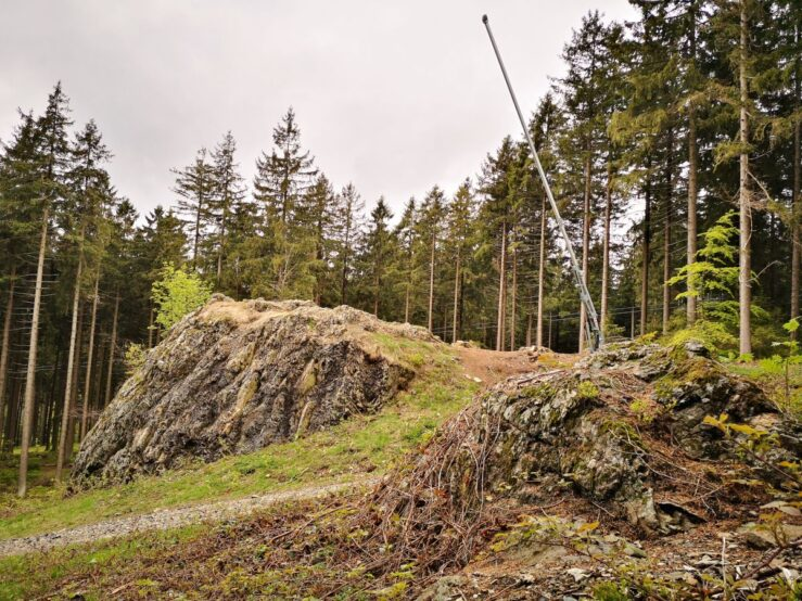 hike in the Harz Mountains