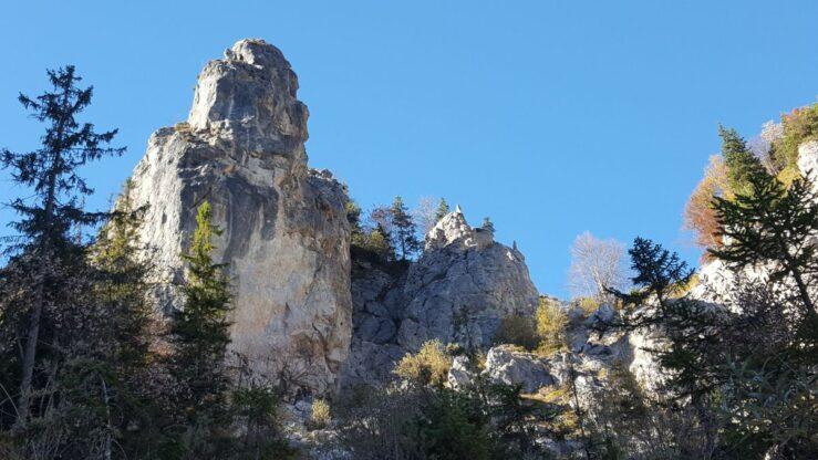 Bavarian Alps where the eagles circle around.