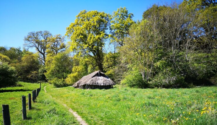 Viking kings used to live here among the Danish Vikings