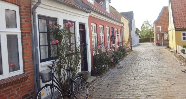 visit Ribe in Denmark - and view the rose-decorated houses.