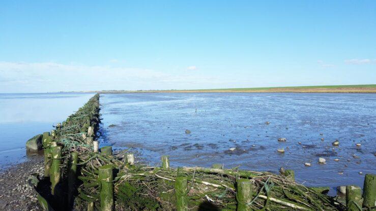 Wadden Sea koog