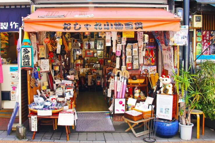 Best things to do in Tokyo 2 days Itinerary - Yanaka