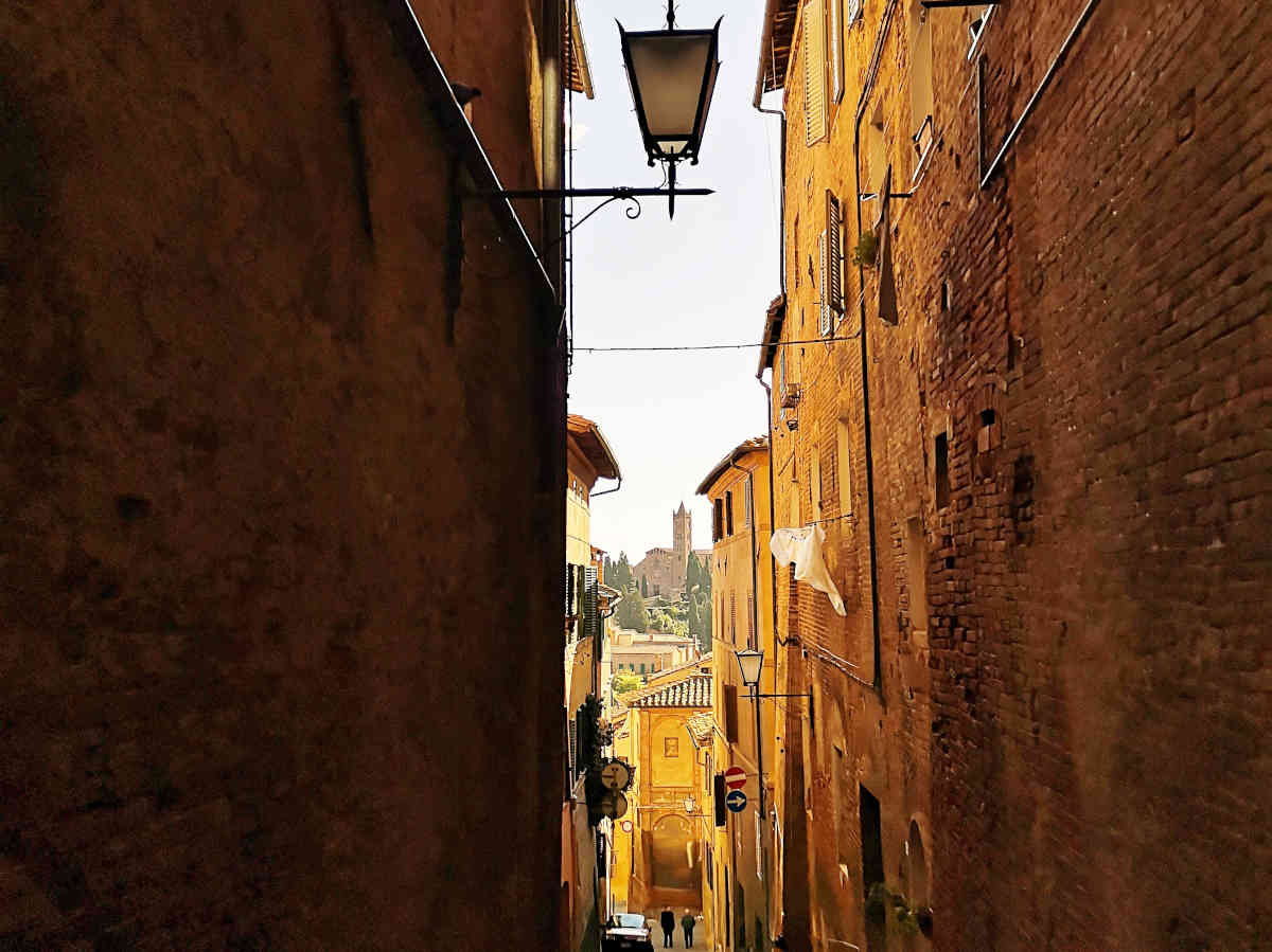 Day trips or trip from Florence in Tuscany