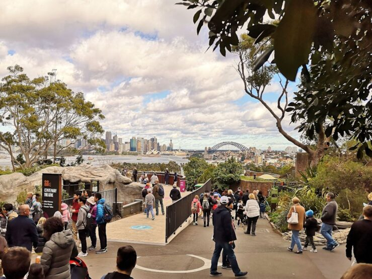 Sydney Harbour Bridge Taronga Zoo The Rocks