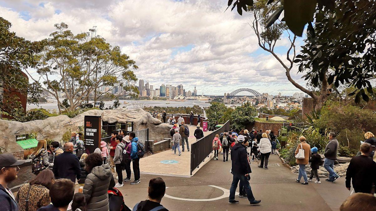 Sydney Harbour Bridge Taronga Zoo The Rocks