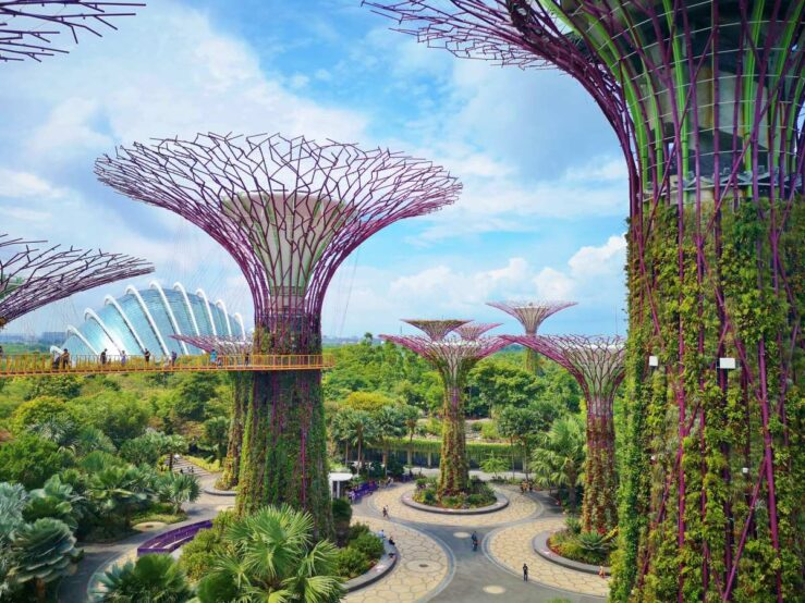Things to Do in Singapore - Tourist Attractions Gardens by the Bay